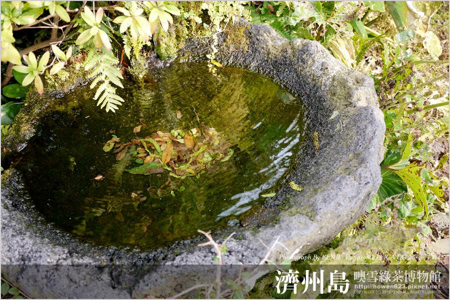 噢雪綠茶博物館19