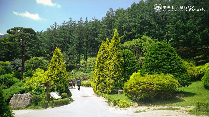 晨靜樹木園-4.jpg