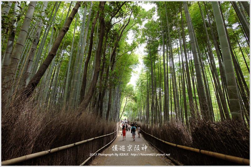 日本-嵯峨野-2.jpg