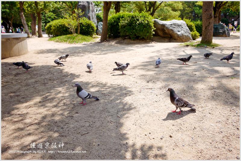 大阪城公園-天守閣-23.jpg