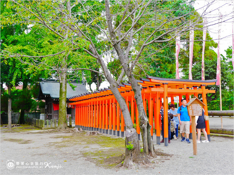 水前寺成趣園-16.jpg