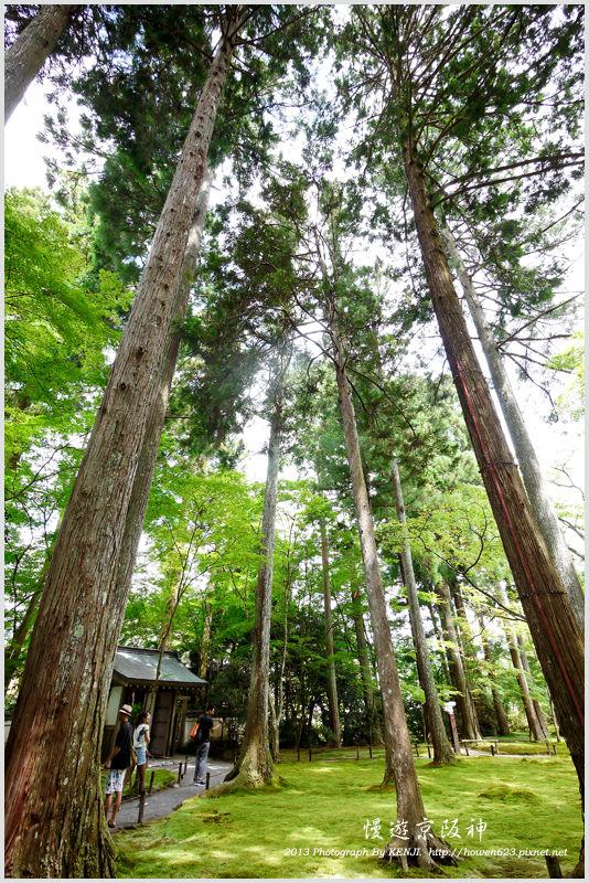 京都-大原三千院-46.jpg