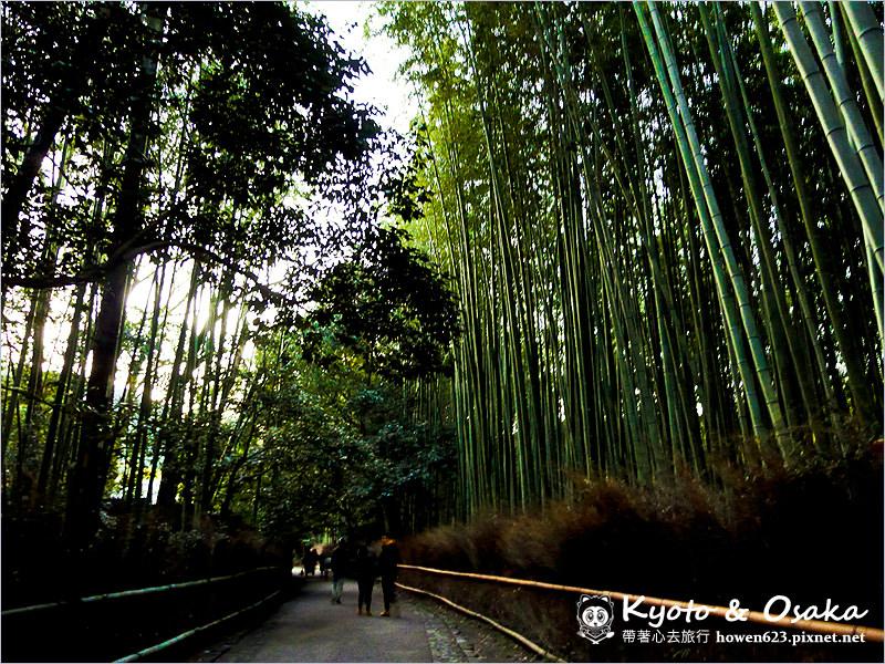 嵐山-天龍寺-34.jpg